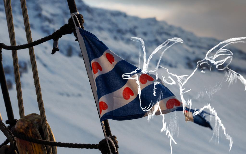 Vuohet islantilaisella vuonolla Kuva: Terhi Ilosaari